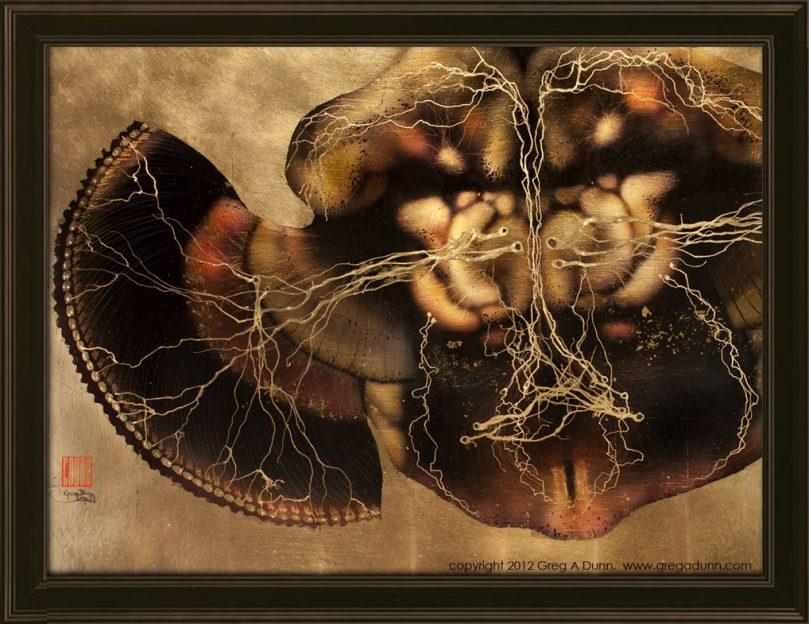 Drosophila Brain framed