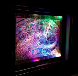 Brainbow Hippocampus lit with multicolored light