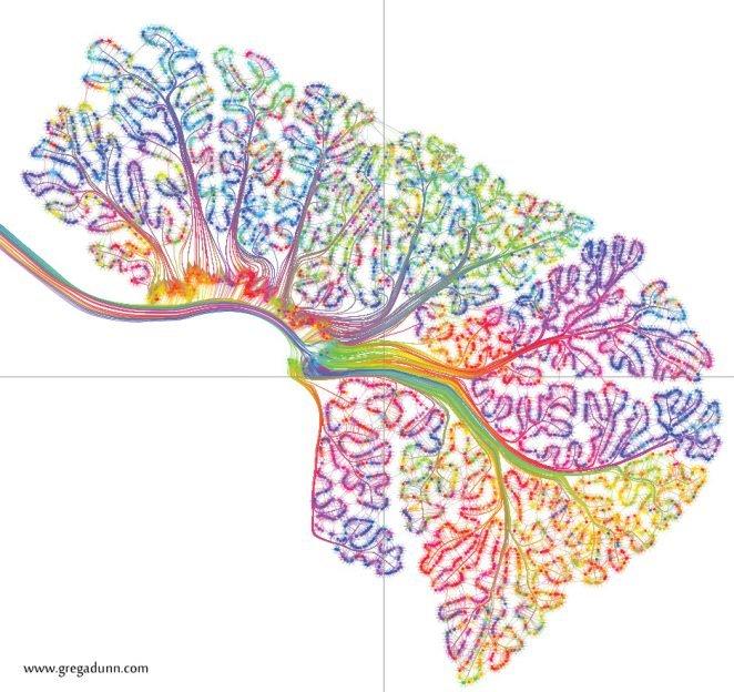 cerebellum-timing-modules-1-through-7